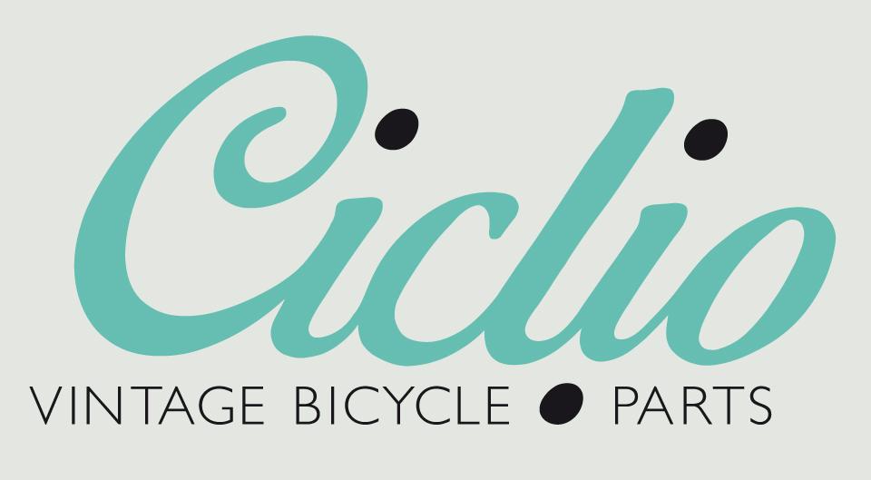 Ciclio-Logo-groß